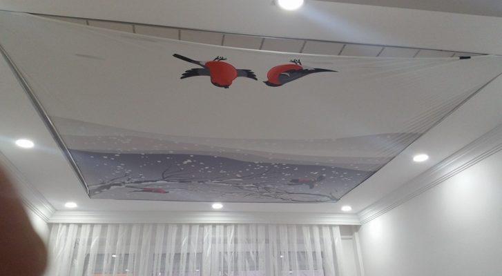 baskılı-gergi-tavan-modelleri-1 (127)