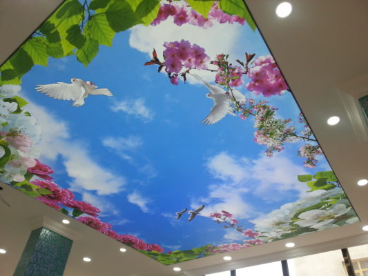 tekirdağ gergi tavan,düğünsalonu dekorasyon, alçıdekorasyon mimarlık, mağaza dekorasyon, otel dekorasyon Tekirdağ